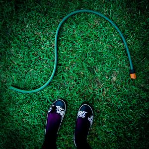 Artykuł naukowy trawa buty